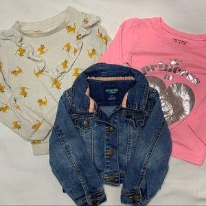 💙3/$20 2T Girls Assorted Brands Set